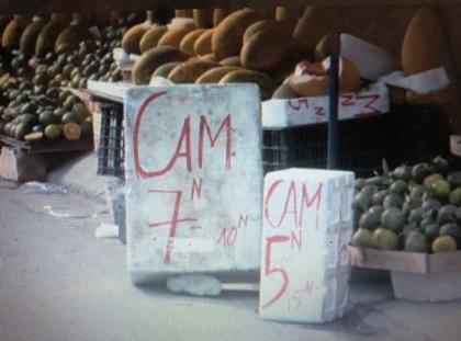 Cam Trung Quốc tràn ngập trên các phố Hà Nội với giá siêu rẻ.