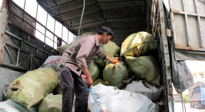 Hơn 12 tấn sừng bò bị cơ quan chức năng bắt giữ.