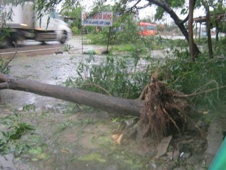Bão số 10 gât thiệt hại nặng nề tại miền Trung