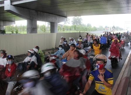 Nhiều người đã dừng lại dưới gầm cầu vượt để trú mưa...