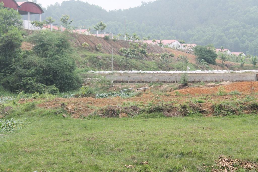 Trại chăn nuôi lợn quy mô 2.400 con lợn nái được xây dựng cao hơn khu dân cư.