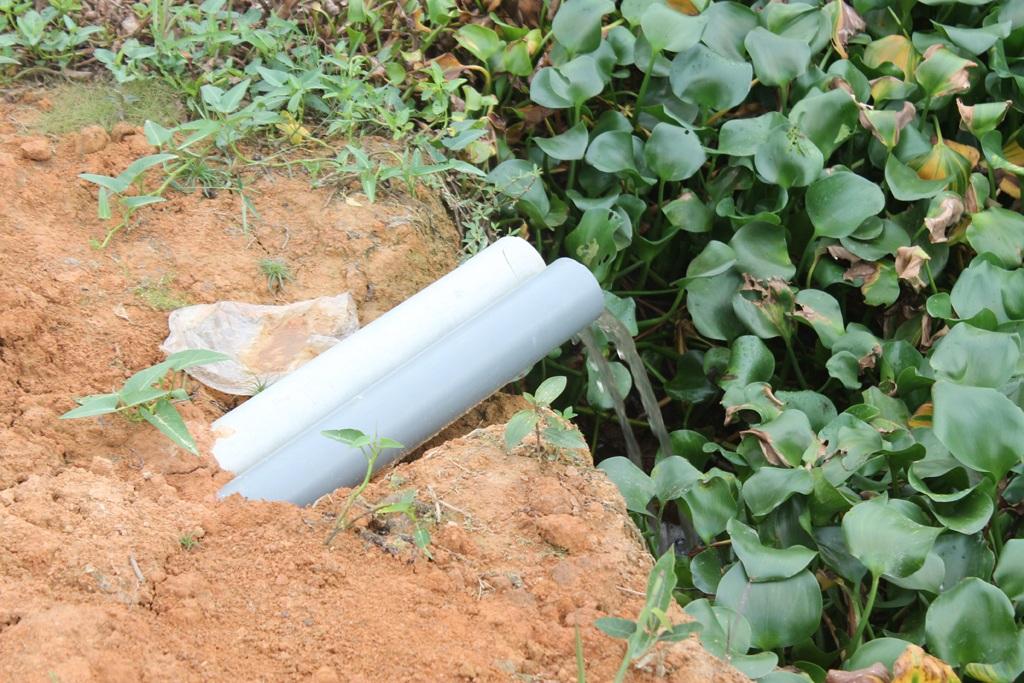 Nước được xả ra môi trường tự nhiên qua các ống nhựa.