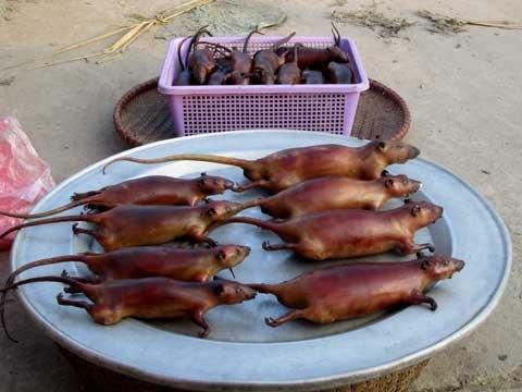 Món chuột thui bán giá cao đắt khách.