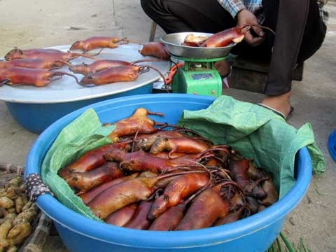 Chuột bán phổ biến ở chợ Canh Nậu.