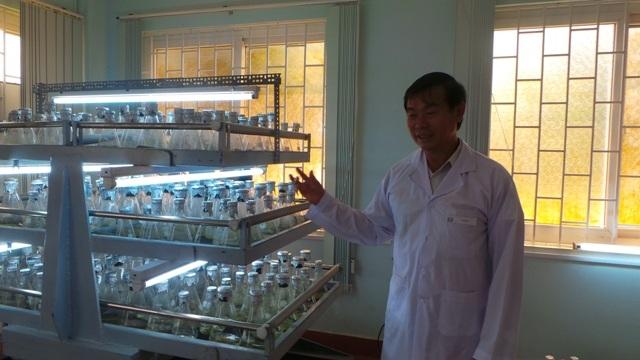 Máy lắc đều liên tục cung cấp oxy - dinh dưỡng cho mô phát triển