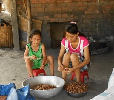 Sau mỗi buổi học em Hằng và cháu Mai lãnh nhãn về lột vỏ, mỗi ký nhãn thịt được 5.000 đồng