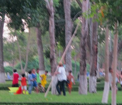 Một nhóm em nhỏ đang cứu hộ diều