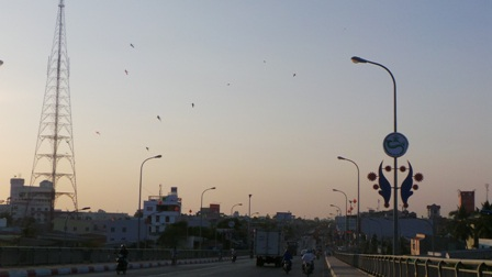Hình ảnh diều bay trên khoảng không cầu Hưng Lợi