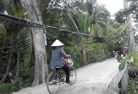 Nhiều người dân rất lo lắng khi thấy dây điện được treo thấp lè tè thế này