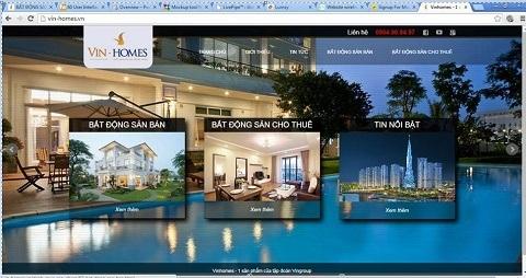 Trang web giả mạo doNguyễn Hoàng Anhthuê người thiết kế