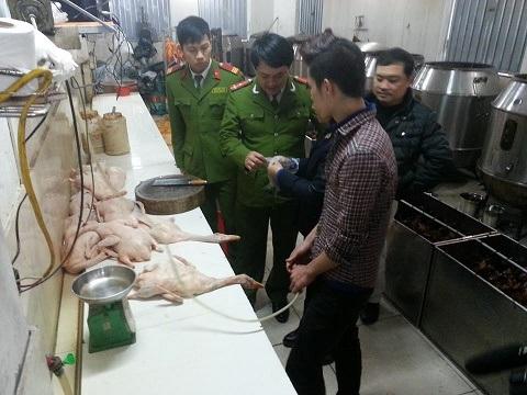 Hàng trăm con vịt bị thu giữ tại thời điểm kiểm tra đều chưa qua kiểm dịch