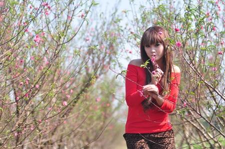 """Cùng Miss Teen """"đọ dáng"""" với hoa đào ngày cuối năm - 11"""