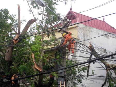 Ngành điện khẩn trương khắc phục hậu quả cơn bão số 8.