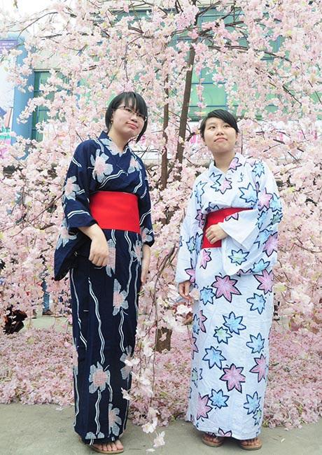 Những cây hoa anh đào làm bằng vải lụa thu hút các cô gái tới chụp ảnh