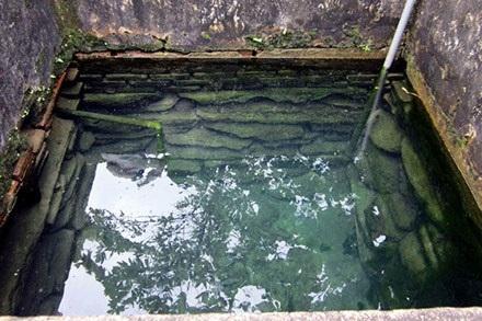 Xạ nước Kim Phát luôn trong xanh và ăm ắp nước quanh năm.
