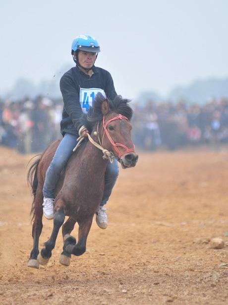 Và chú ngựa của nài Vàng Văn Huỳnh cán đích đầu tiên