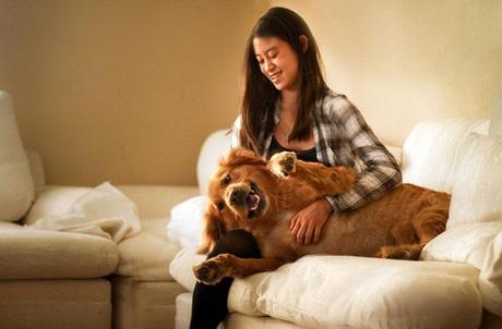 Jessica Trinhvà chú chó cưng Chuppy
