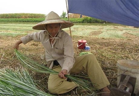 Trần Hùng John và những trải nghiệm khó quêntại Việt Nam.