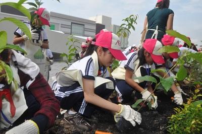 Các em học sinh đã tự tay ươm trồng cây xanh để bảo vệ môi trường sống sau này