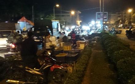 Các hộ kinh doanh ở chợ tạm sẽ di chuyển về chợ đầu mối Minh Khai