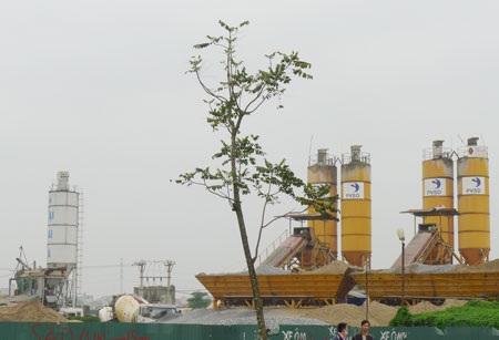 Cả chục trạm trộn bê tông khủng ngang nhiên hoạt động trên địa bàn phường Mễ Trì - Phú Đô