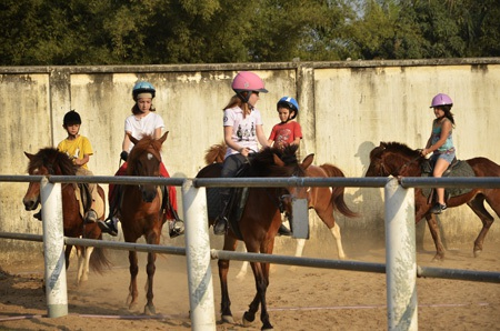 Các học viên tham gia học cưỡi ngựa tại