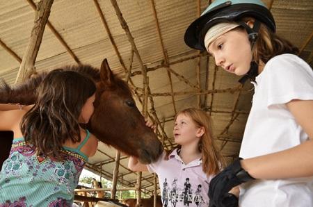 Học viên vuốt ve ngựa cưng của mình