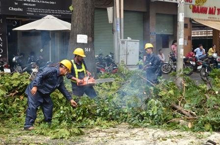 Công nhân Công ty cây xanh tiến hành thu dọn hiện trường