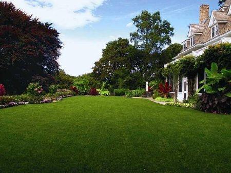 Thảm cỏ trước tòa nhà là một nơi vui chơi và tổ chức tiệc ngoài trời lí tưởng