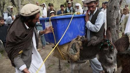 Lần đầu tiên trong lịch sử người dân Afghanistan được đi bầu Tổng thống