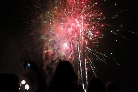 Những loạt pháo hoa rực rỡ trong thời khắc chuyển giao năm cũ và năm mới