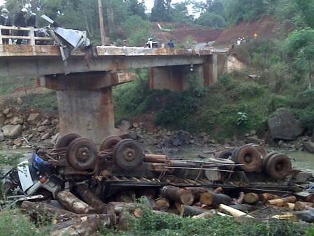 Bộ GTVT đề nghị rà soát, xử lý ô tô tải chở gỗ vi phạm trên cả nước - 1