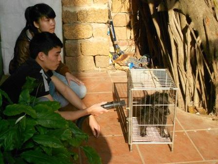 Những con thú cưng được chăm sóc từ A-Z