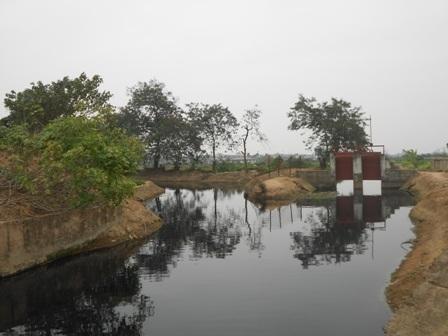 Nguồn nước tưới đen ngòm vì ô nhiễm