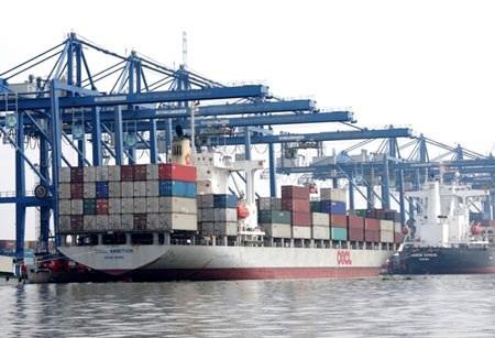 Cảng biển Cát Lái - TPHCM (ảnh minh họa: Báo GTVT)