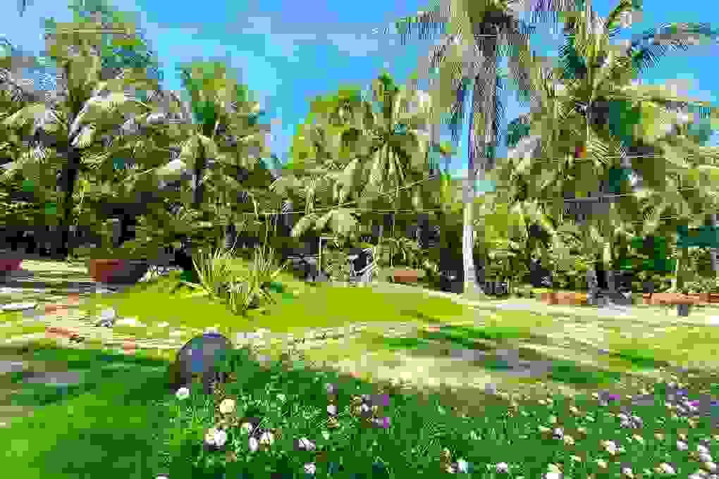 Chàng trai Tiền Giang cải tạo đất trống thành vườn 200m2 chỉ 10 triệu đồng