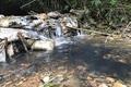 Triệu tập một số người liên quan vụ đổ trộm dầu thải gây ô nhiễm nước sông Đà
