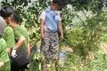 Người cha nghi sát hại 2 con ở Vũng Tàu đã thắt cổ tự tử tại Đắk Nông