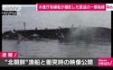Video tàu tuần tra Nhật Bản phun vòi rồng đánh chìm tàu Triều Tiên vi phạm