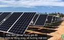 Đưa nhà máy điện mặt trời 900 tỷ vào sử dụng