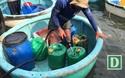 Cần làm rõ một điểm bán xăng dầu bất bình thường ở Phú Yên