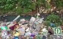 Rùng mình ngập ngụa rác dưới chân cầu Long Biên