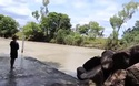 Khúc sông nguy hiểm với đàn cá sấu rình rập đoạt mạng