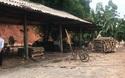 Hệ luỵ xưởng bóc mọc như nấm sau mưa: Chặn cầu tranh nhau từng xe gỗ
