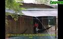 Hoàn cảnh khó khăn của vợ chồng trẻ ở Bạc Liêu.