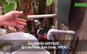 TPHCM: Nước máy quá bẩn, chỉ dùng để... tưới cây