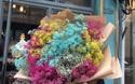"""Cánh mày râu """"săn"""" hoa siêu to khổng lồ làm quà 20/10 khiến chị em mê mẩn"""
