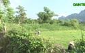 """Hàng ngàn m2 đất nông nghiệp được """"ưu ái"""" để chuyển đổi thành đất ở?"""