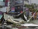 Siêu bão Soudelor nhấc bổng máy bay tại Đài Loan, 6 người chết