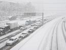 Mỹ đối mặt bão tuyết dữ dội, 6 bang ban bố tình trạng khẩn cấp